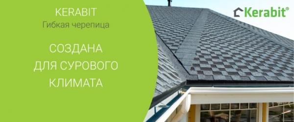 Битумная черепица Кропивницкий / Кировоград