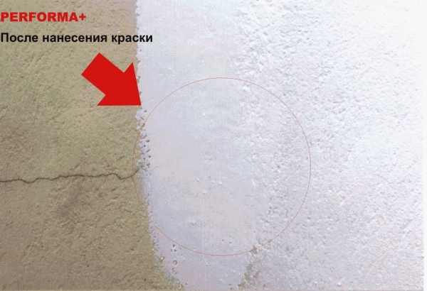 Краска резиновая PERFORMA Plus для Интерьеров и Экстерьеров